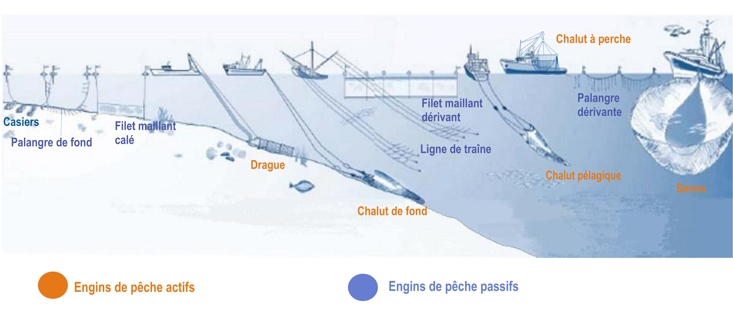 Carte des engins de peche